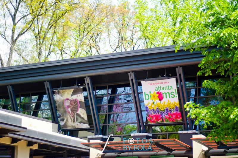 1 Emerald + Rajash Intimate Garden Wedding | Atlanta Botanical Garden | Atlanta Wedding Photographers | Fotos by Fola